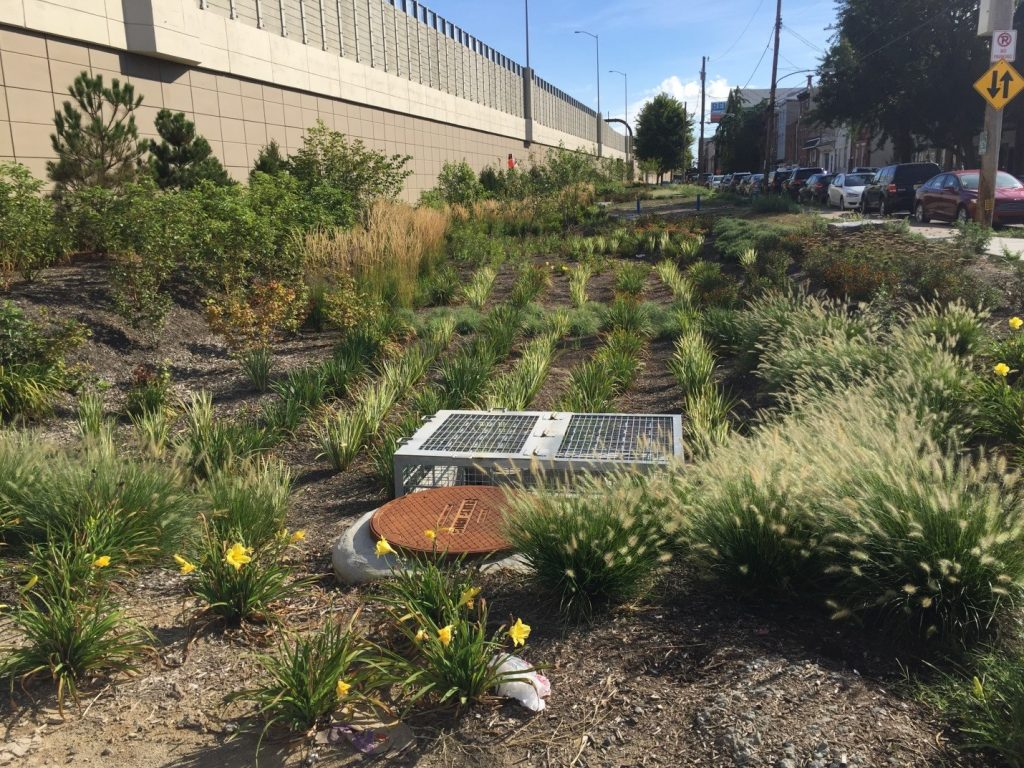 A bioswale at Girard